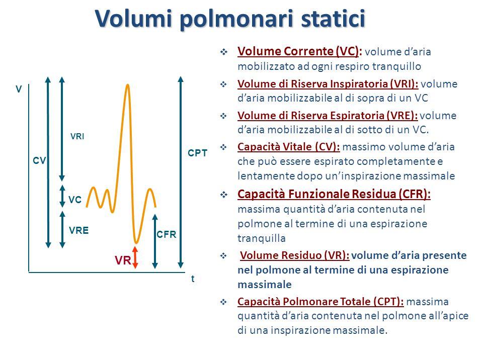 CPT V CV VRI VRE VR CFR VC t Volumi polmonari statici  Volume Corrente (VC): volume d'aria mobilizzato ad ogni respiro tranquillo  Volume di Riserva