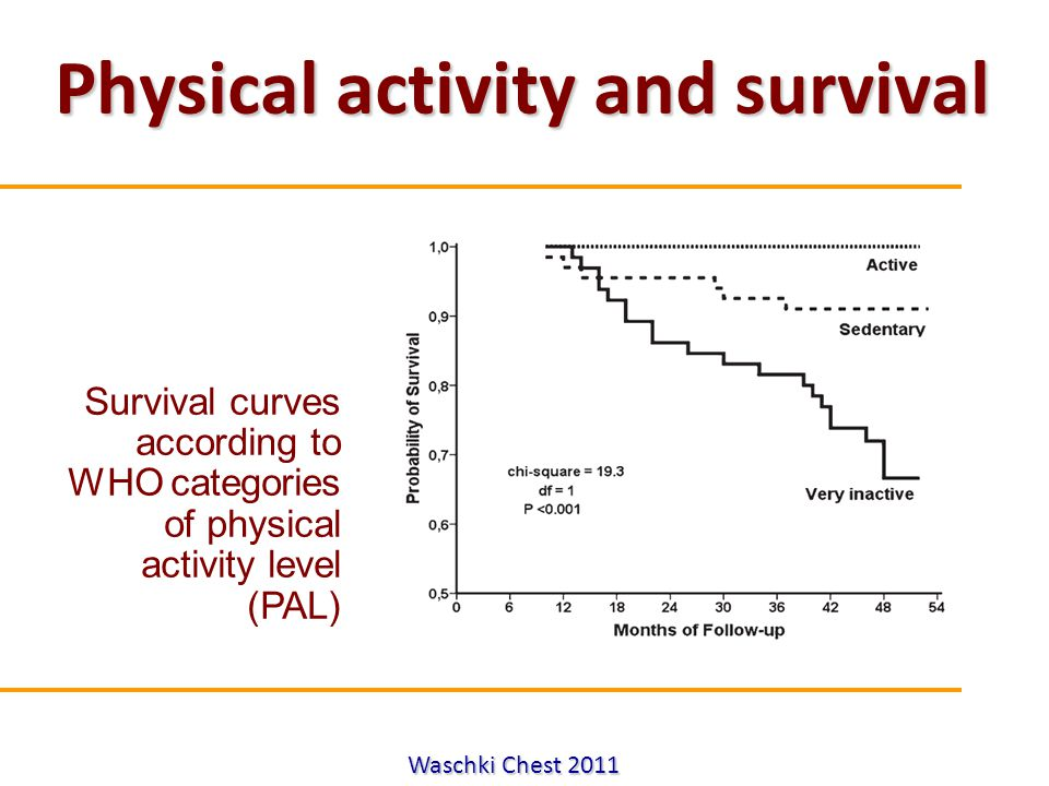 Attilio Pietra Waschki Chest 2011 Physical activity and survival Survival curves according to WHO categories of physical activity level (PAL)