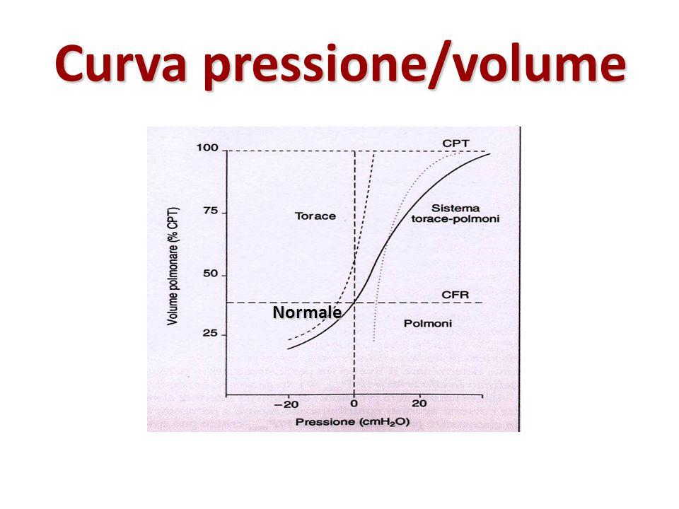 Curva pressione/volume Normale