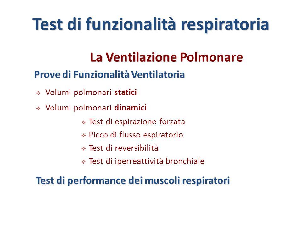 La Ventilazione La Ventilazione Polmonare Prove di Funzionalità Ventilatoria  Volumi polmonari statici  Volumi polmonari dinamici  Test di espirazi