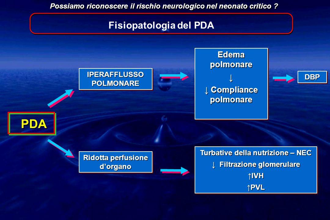 PDA Possiamo riconoscere il rischio neurologico nel neonato critico ? IPERAFFLUSSO POLMONARE Edema polmonare ↓ ↓ Compliance polmonare Edema polmonare