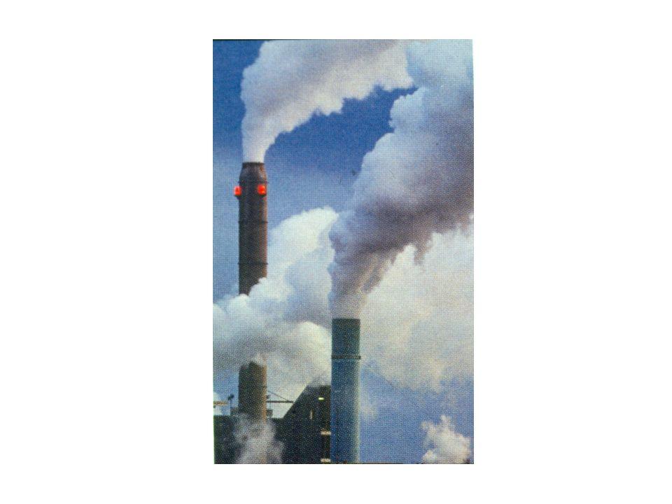 L' inquinamento dell ambiente di vita e di lavoro è sempre più spesso causa o motivo di aggravamento di numerose patologie.