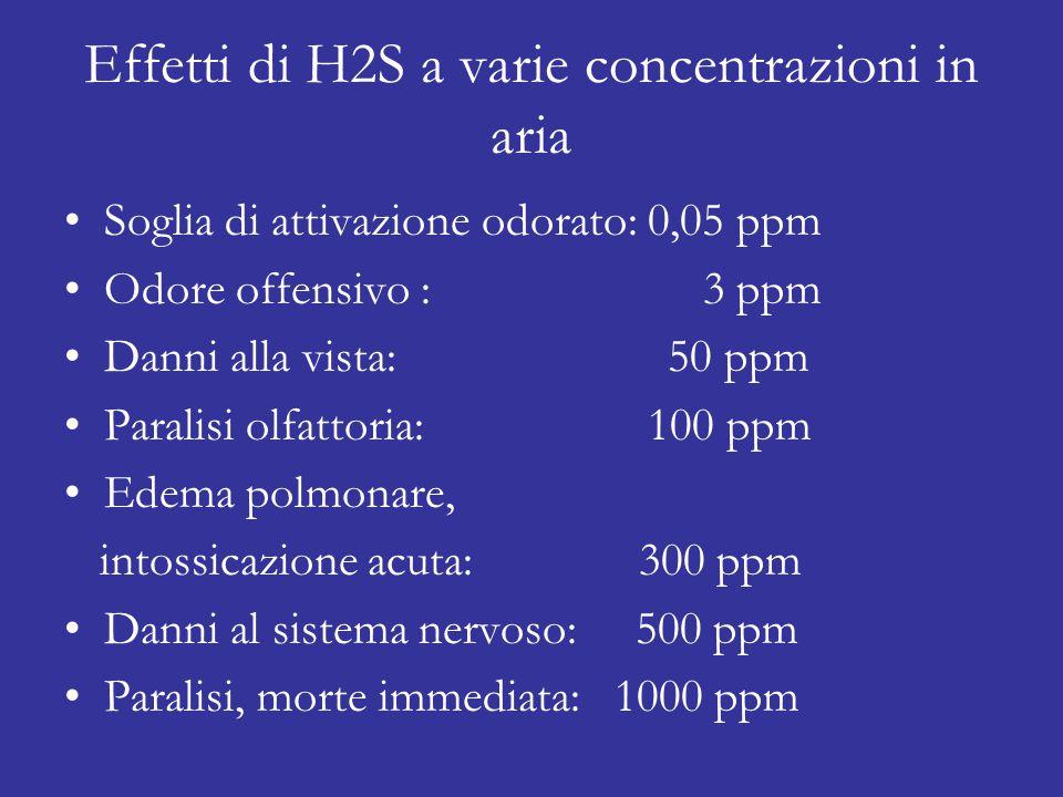 Effetti di H2S a varie concentrazioni in aria Soglia di attivazione odorato: 0,05 ppm Odore offensivo : 3 ppm Danni alla vista: 50 ppm Paralisi olfattoria: 100 ppm Edema polmonare, intossicazione acuta: 300 ppm Danni al sistema nervoso: 500 ppm Paralisi, morte immediata: 1000 ppm