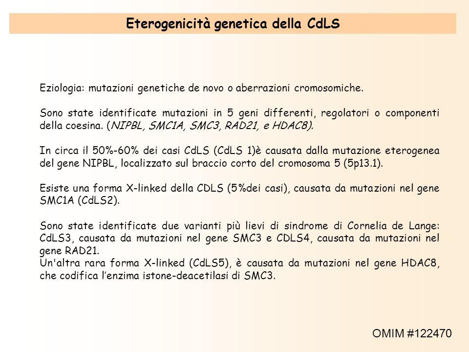 Eziologia: mutazioni genetiche de novo o aberrazioni cromosomiche. Sono state identificate mutazioni in 5 geni differenti, regolatori o componenti del