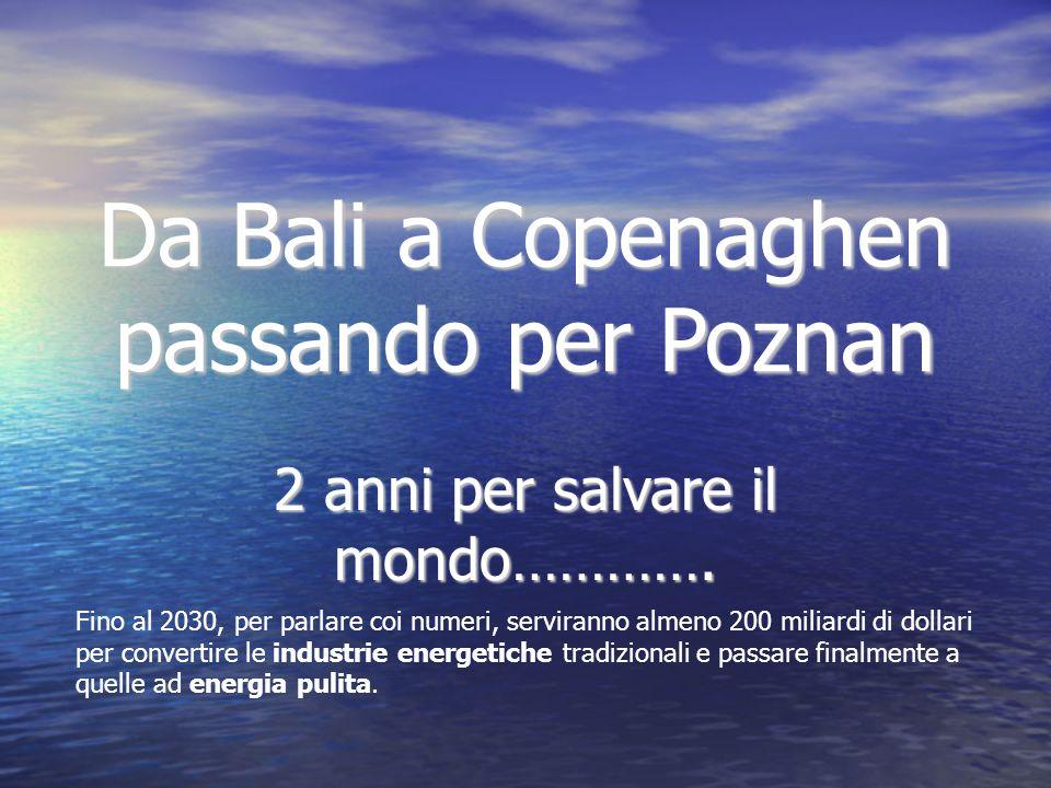 Da Bali a Copenaghen passando per Poznan 2 anni per salvare il mondo………….