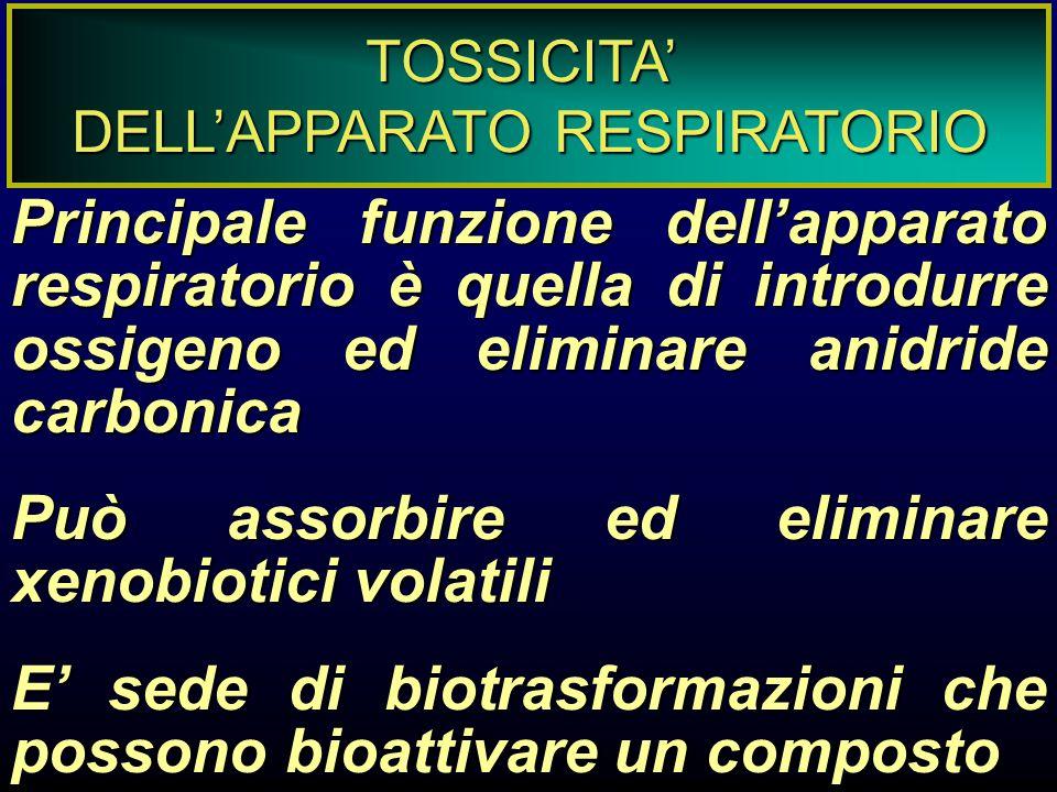 REAZIONI CRONICHE AD AGENTI TOSSICI ASMA Difficoltà respiratoria causata da broncocostrizione per inalazione di agenti tossici/allergenici