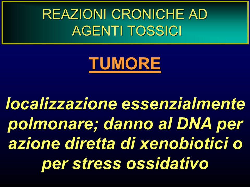 REAZIONI CRONICHE AD AGENTI TOSSICI TUMORE localizzazione essenzialmente polmonare; danno al DNA per azione diretta di xenobiotici o per stress ossida