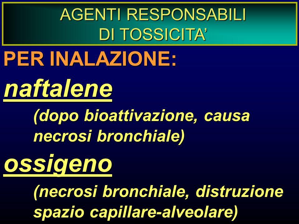 AGENTI RESPONSABILI DI TOSSICITA' PER INALAZIONE: naftalene (dopo bioattivazione, causa necrosi bronchiale) ossigeno (necrosi bronchiale, distruzione