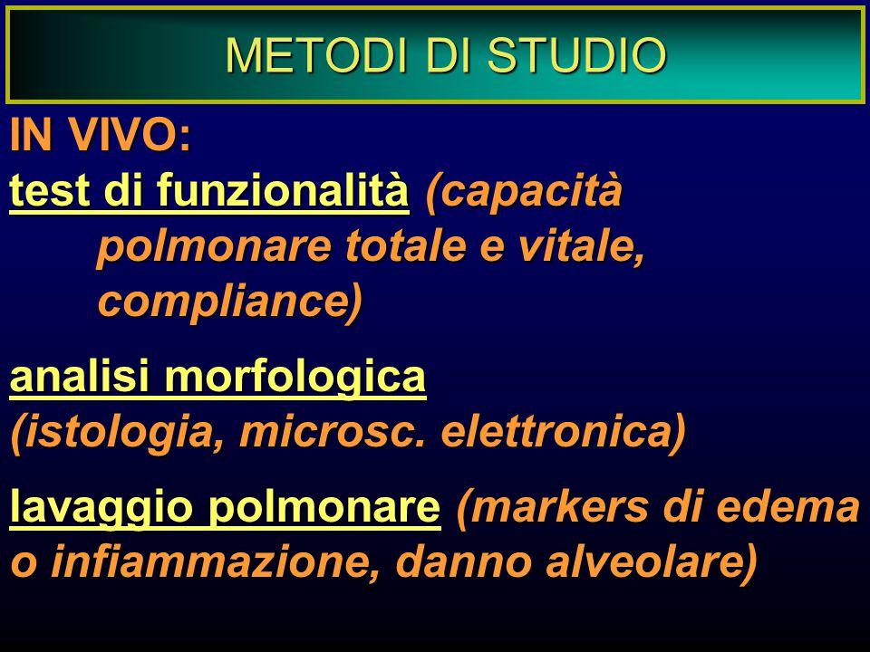 METODI DI STUDIO IN VIVO: test di funzionalità (capacità polmonare totale e vitale, compliance) analisi morfologica (istologia, microsc. elettronica)