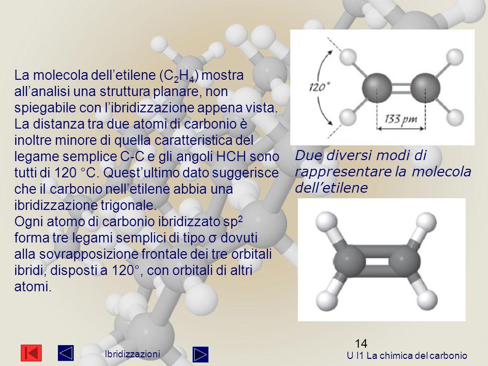 14 Ibridizzazioni La molecola dell'etilene (C 2 H 4 ) mostra all'analisi una struttura planare, non spiegabile con l'ibridizzazione appena vista.