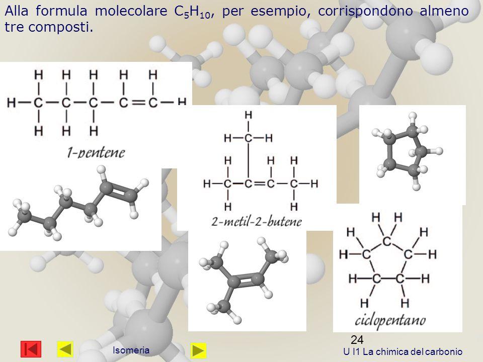 24 Isomeria Alla formula molecolare C 5 H 10, per esempio, corrispondono almeno tre composti.