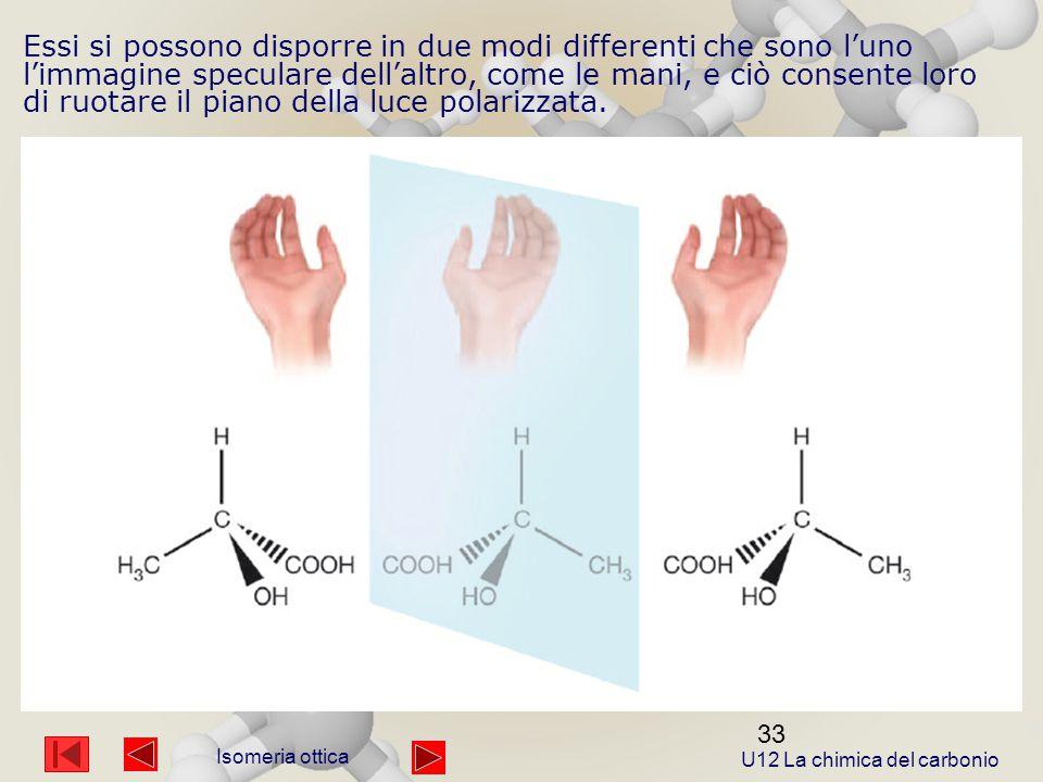 33 Essi si possono disporre in due modi differenti che sono l'uno l'immagine speculare dell'altro, come le mani, e ciò consente loro di ruotare il piano della luce polarizzata.
