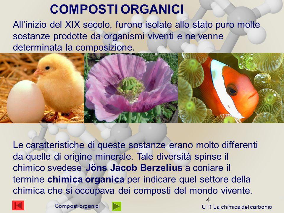 4 Composti organici All'inizio del XIX secolo, furono isolate allo stato puro molte sostanze prodotte da organismi viventi e ne venne determinata la composizione.