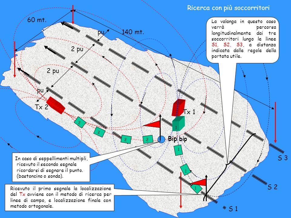 60 mt. 140 mt. pu 2 pu S 1 S 2 S 3 La valanga in questo caso verrà percorsa longitudinalmente dai tre soccorritori lungo le linee S1, S2, S3, a distan