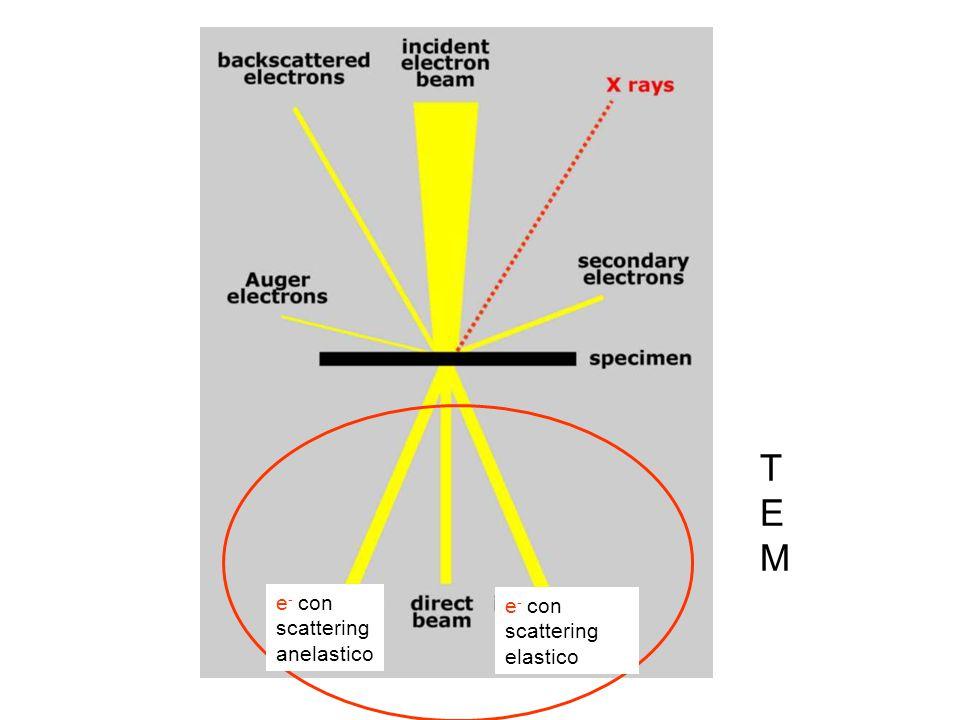 TEMTEM e - con scattering anelastico e - con scattering elastico