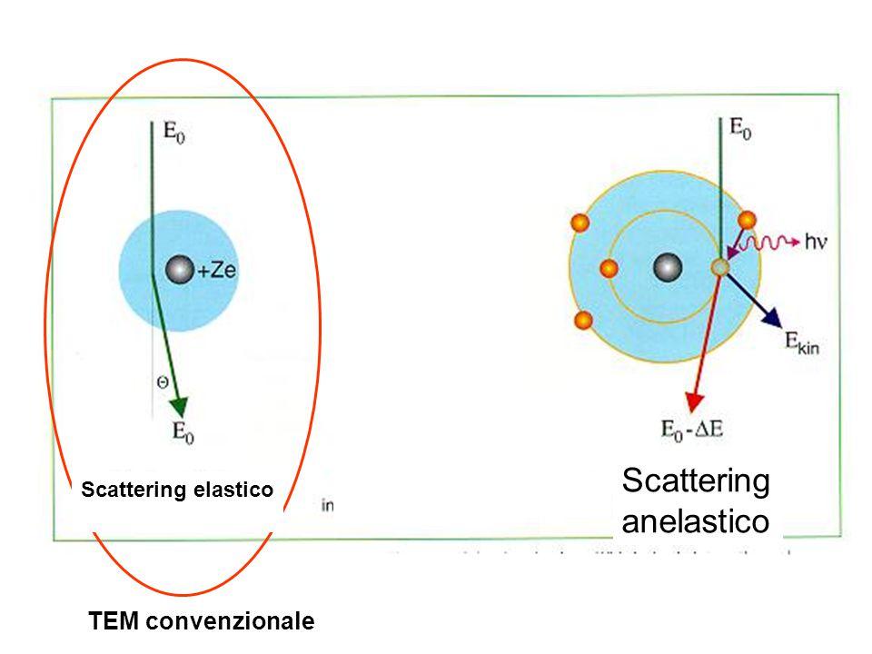 TEM convenzionale Scattering elastico Scattering anelastico
