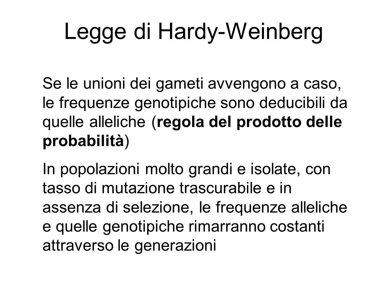 Legge di Hardy-Weinberg Se le unioni dei gameti avvengono a caso, le frequenze genotipiche sono deducibili da quelle alleliche (regola del prodotto de