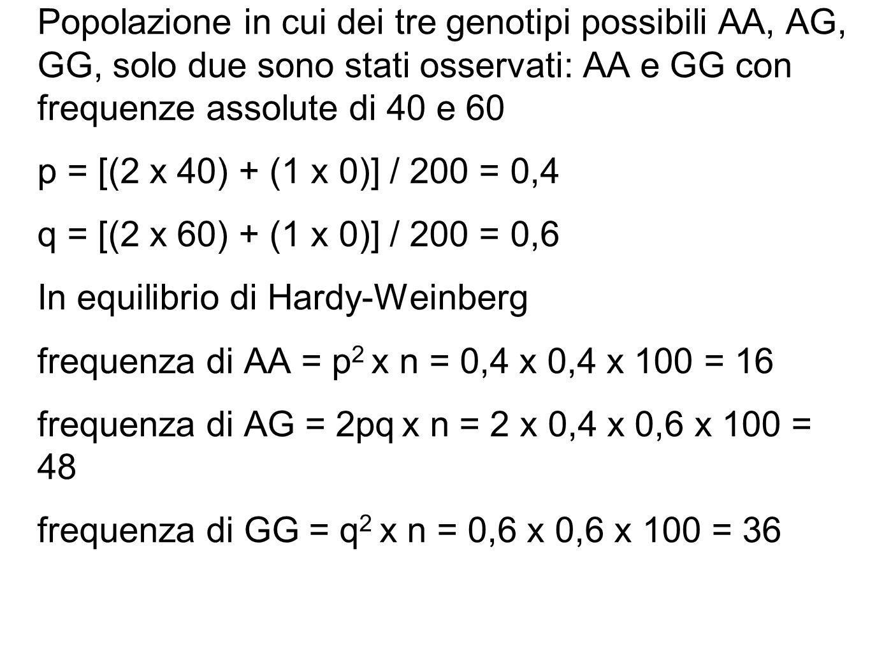 Popolazione in cui dei tre genotipi possibili AA, AG, GG, solo due sono stati osservati: AA e GG con frequenze assolute di 40 e 60 p = [(2 x 40) + (1