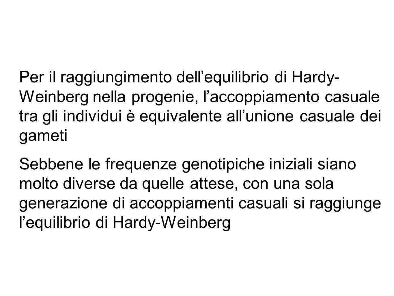 Per il raggiungimento dell'equilibrio di Hardy- Weinberg nella progenie, l'accoppiamento casuale tra gli individui è equivalente all'unione casuale de