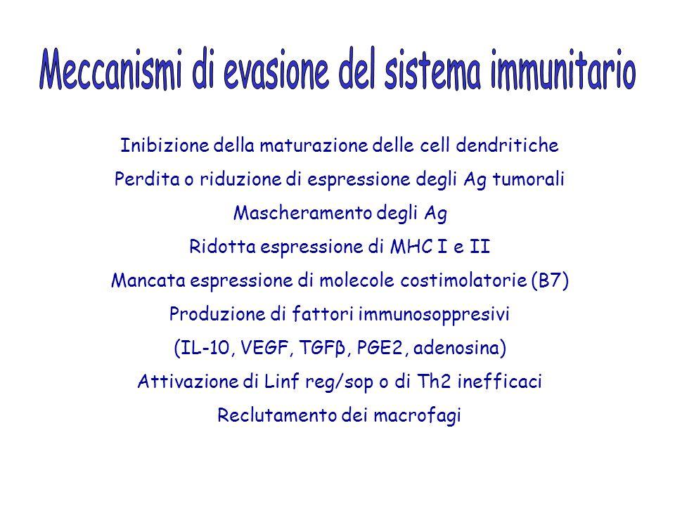 Inibizione della maturazione delle cell dendritiche Perdita o riduzione di espressione degli Ag tumorali Mascheramento degli Ag Ridotta espressione di MHC I e II Mancata espressione di molecole costimolatorie (B7) Produzione di fattori immunosoppresivi (IL-10, VEGF, TGFβ, PGE2, adenosina) Attivazione di Linf reg/sop o di Th2 inefficaci Reclutamento dei macrofagi