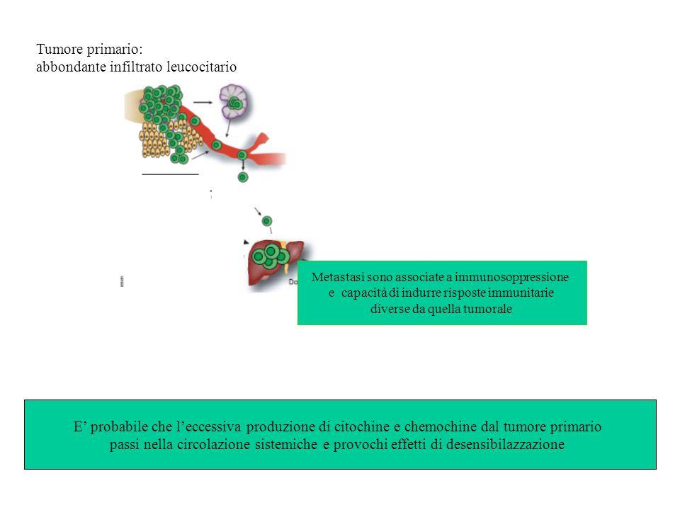 Tumore primario: abbondante infiltrato leucocitario E' probabile che l'eccessiva produzione di citochine e chemochine dal tumore primario passi nella circolazione sistemiche e provochi effetti di desensibilazzazione Metastasi sono associate a immunosoppressione e capacità di indurre risposte immunitarie diverse da quella tumorale