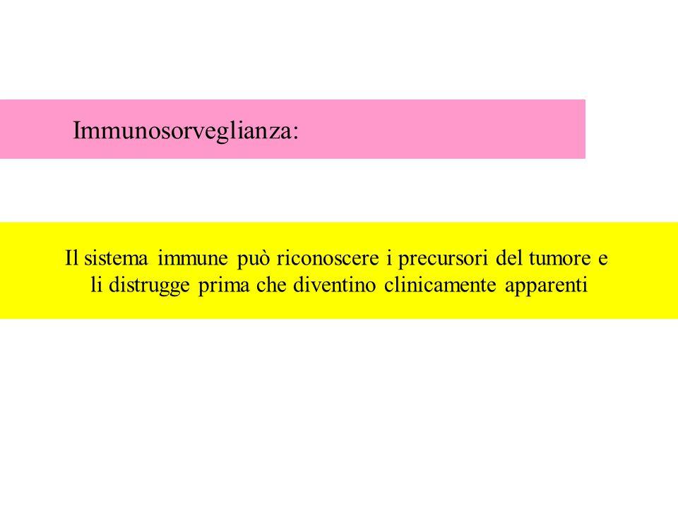 Immunosorveglianza: Il sistema immune può riconoscere i precursori del tumore e li distrugge prima che diventino clinicamente apparenti