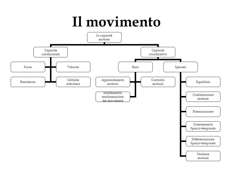 Il movimento Le capacità motorie Capacità condizionali Resistenza Mobilità articolare ForzaVelocità Capacità coordinative Base Adattamento, trasformaz