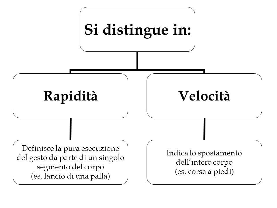 Si distingue in: Rapidità Definisce la pura esecuzione del gesto da parte di un singolo segmento del corpo (es. lancio di una palla) Velocità Indica l