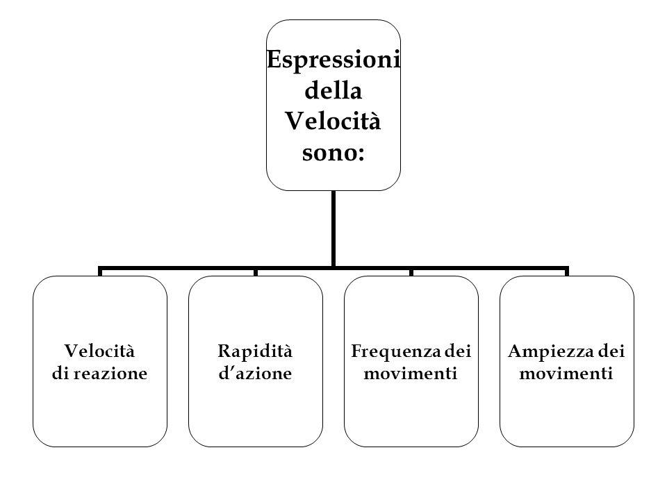 Espressioni della Velocità sono: Velocità di reazione Rapidità d'azione Frequenza dei movimenti Ampiezza dei movimenti