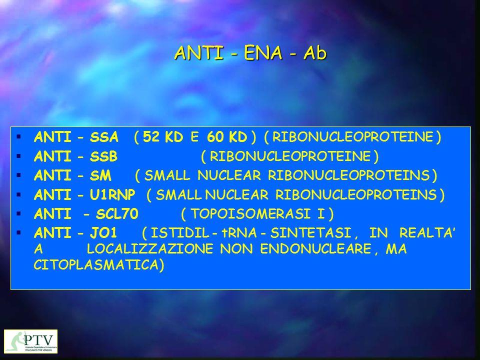 ANTI - ENA - Ab  ANTI - SSA ( 52 KD E 60 KD ) ( RIBONUCLEOPROTEINE )  ANTI - SSB ( RIBONUCLEOPROTEINE )  ANTI - SM ( SMALL NUCLEAR RIBONUCLEOPROTEI