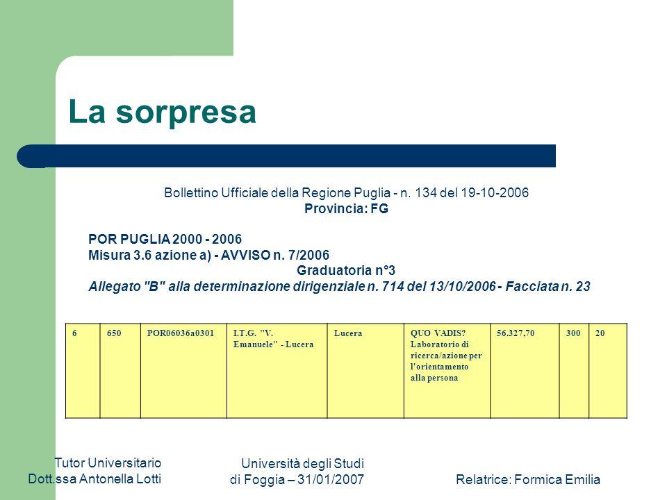 Tutor Universitario Dott.ssa Antonella Lotti Università degli Studi di Foggia – 31/01/2007Relatrice: Formica Emilia In sintesi Obiettivo generale del