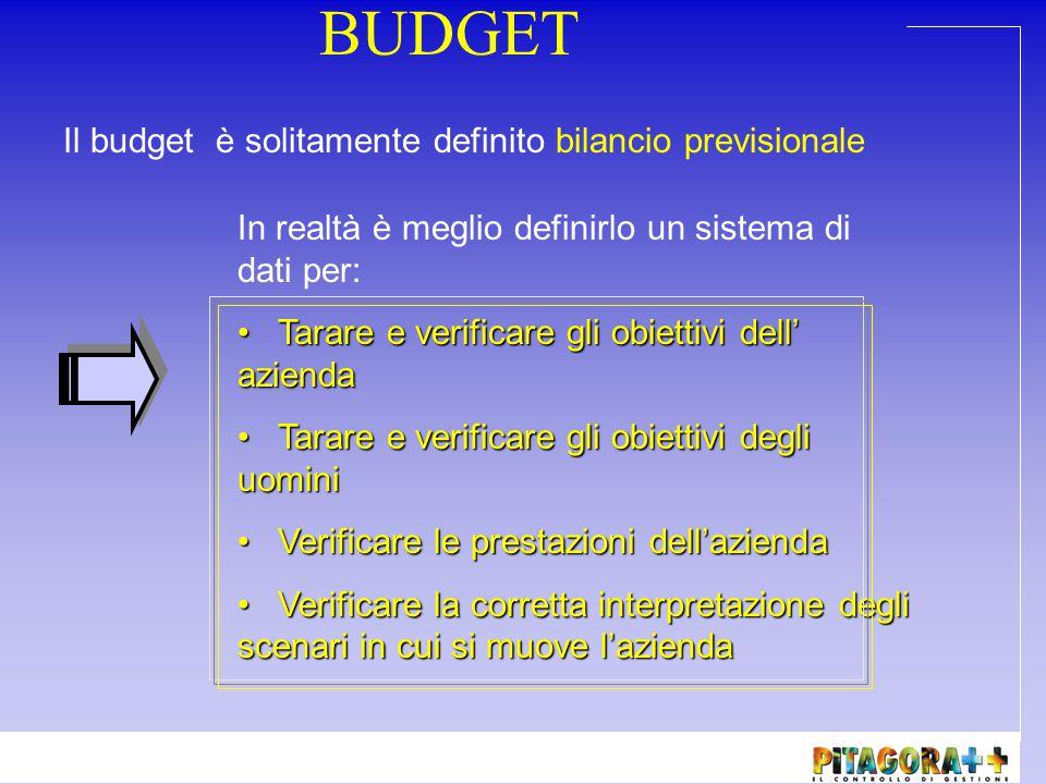 Budget strategico Indica gli obiettivi che persegue l'azienda a livello filosofico .