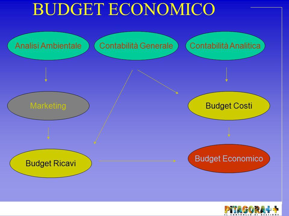 BUDGET ECONOMICO Il signor Aldo, responsabile dell'area amministrativa è stato incaricato di redigere un budget economico dell'azienda dove lavora.