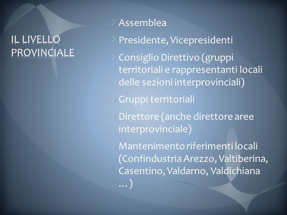 Assemblea Presidente, Vicepresidenti Consiglio Direttivo (gruppi territoriali e rappresentanti locali delle sezioni interprovinciali) Gruppi territoriali Direttore (anche direttore aree interprovinciale) Mantenimento riferimenti locali (Confindustria Arezzo, Valtiberina, Casentino, Valdarno, Valdichiana …)