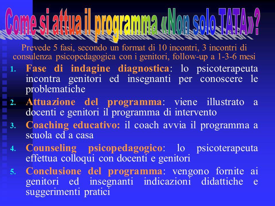 Prevede 5 fasi, secondo un format di 10 incontri, 3 incontri di consulenza psicopedagogica con i genitori, follow-up a 1-3-6 mesi 1. 1. Fase di indagi