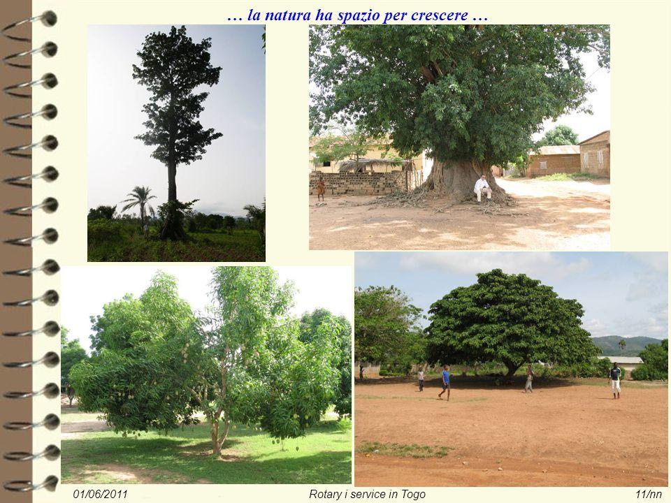01/06/2011Rotary i service in Togo11/nn … la natura ha spazio per crescere …