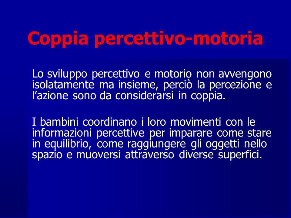 Coppia percettivo-motoria Lo sviluppo percettivo e motorio non avvengono isolatamente ma insieme, perciò la percezione e l'azione sono da considerarsi in coppia.