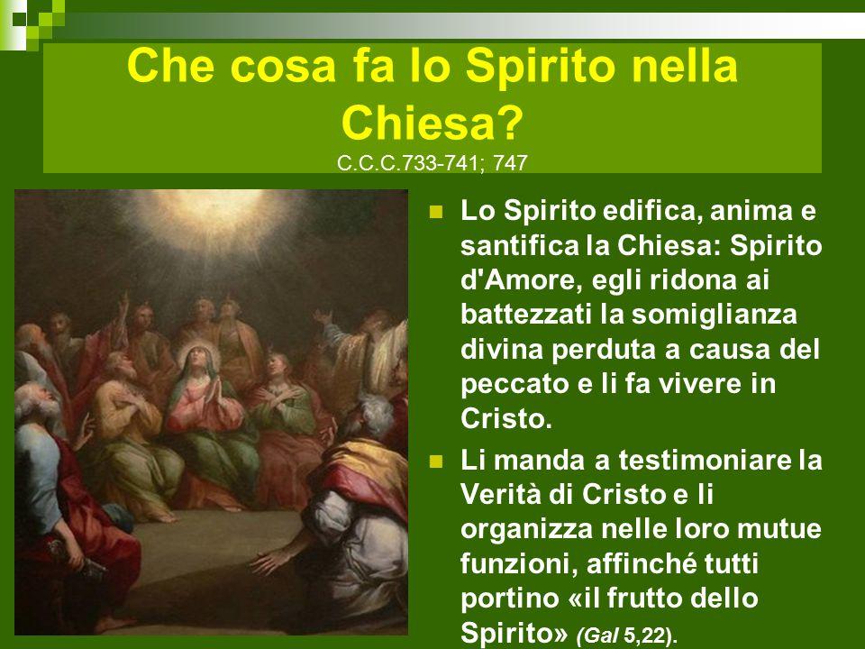 Che cosa fa lo Spirito nella Chiesa.