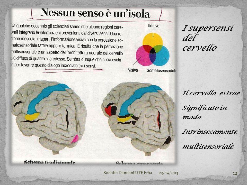 Il cervello estrae Significato in modo Intrinsecamente multisensoriale 23/04/2013Rodolfo Damiani UTE Erba 12