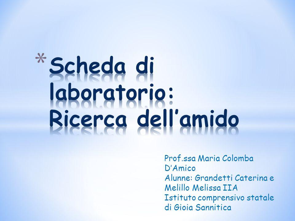 Prof.ssa Maria Colomba D'Amico Alunne: Grandetti Caterina e Melillo Melissa IIA Istituto comprensivo statale di Gioia Sannitica