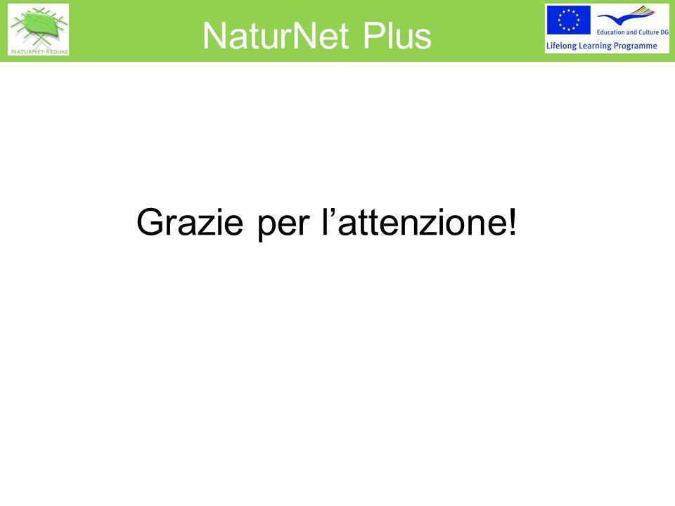 NaturNet Plus Grazie per l'attenzione!