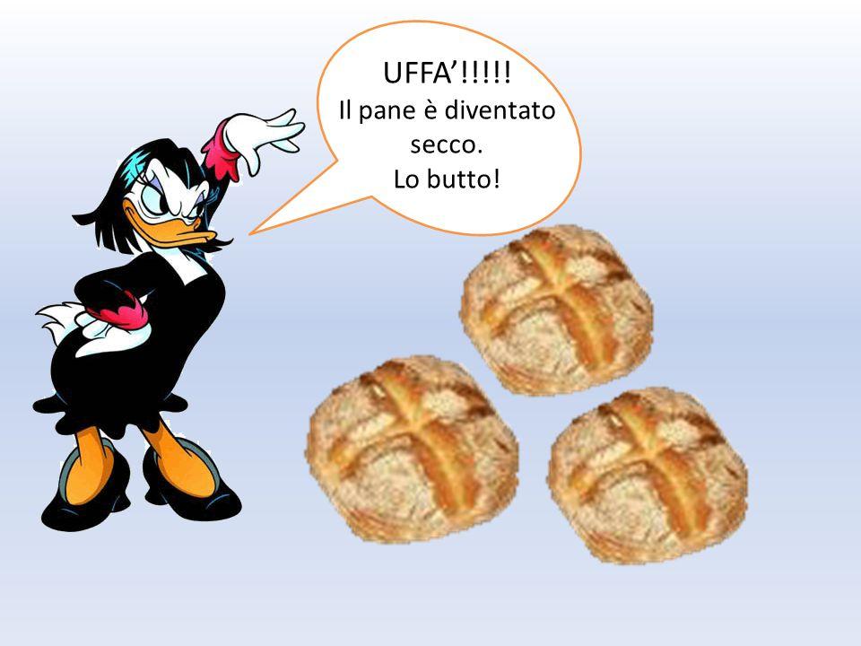 SQUADRA ANTISPRECO Io sono Gury Io sono Guagliò: l'aglio ss Io sono Arabella Io sono Foody: mascotte di Expo 2015