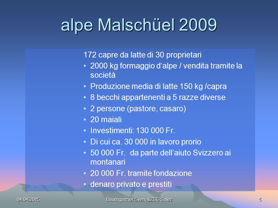 alpe Malschüel 2009 172 capre da latte di 30 proprietari 2000 kg formaggio d'alpe / vendita tramite la società Produzione media di latte 150 kg /capra