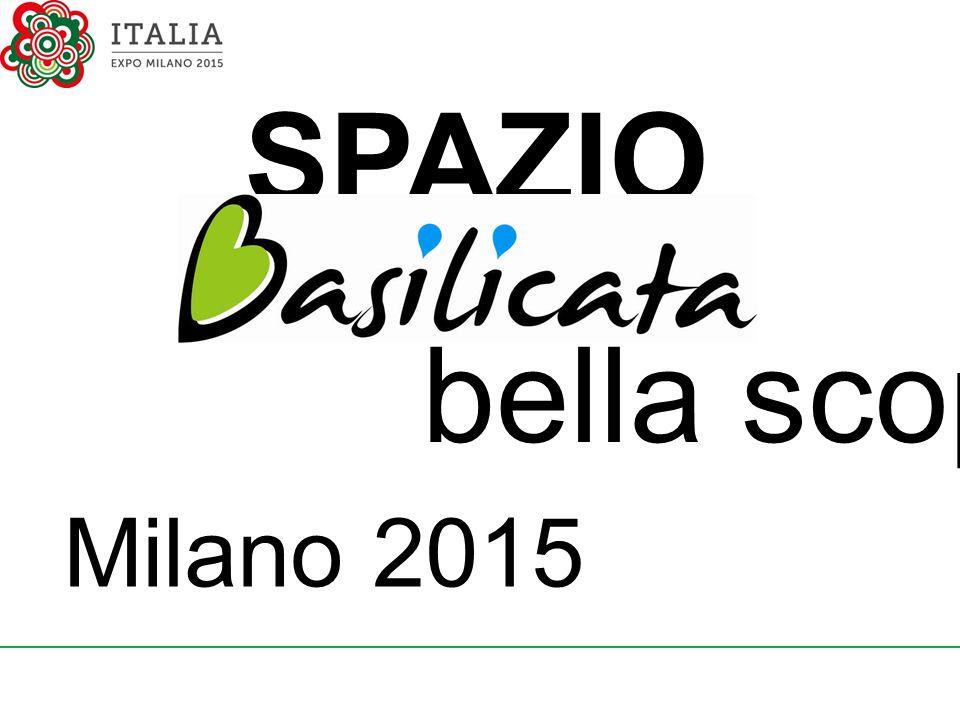 SPAZIO Milano 2015 bella scoperta!