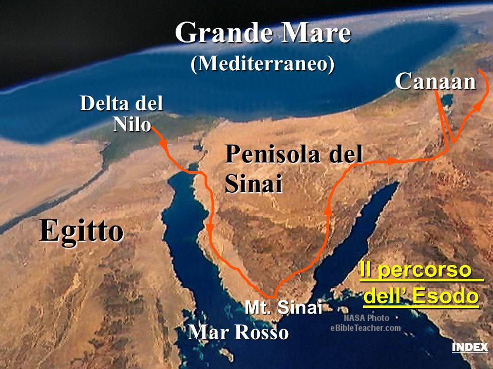 Egitto Delta del Nilo Nilo Grande Mare (Mediterraneo) Mar Rosso Canaan Mt. Sinai Il percorso dell' Esodo Penisola del Sinai Route of the Exodus INDEX