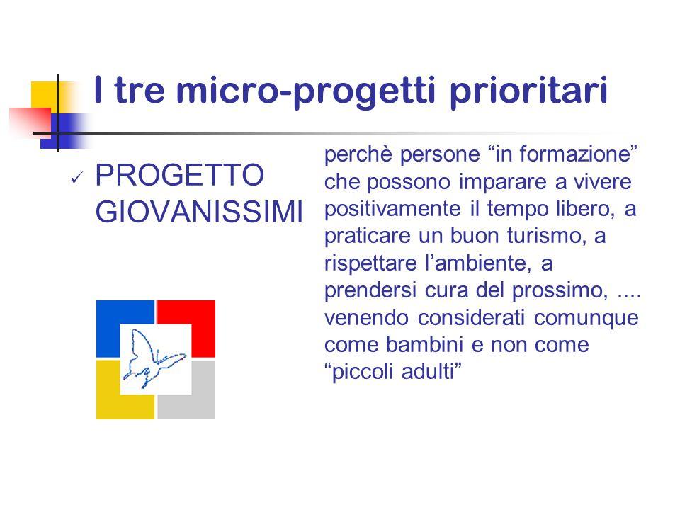 I tre micro-progetti prioritari PIANO DI FORMAZIONE PROGETTO GIOVANI - decentrata - diversificata - diffusa di animazione, di prevenzione del disagio, di impegno sociale;