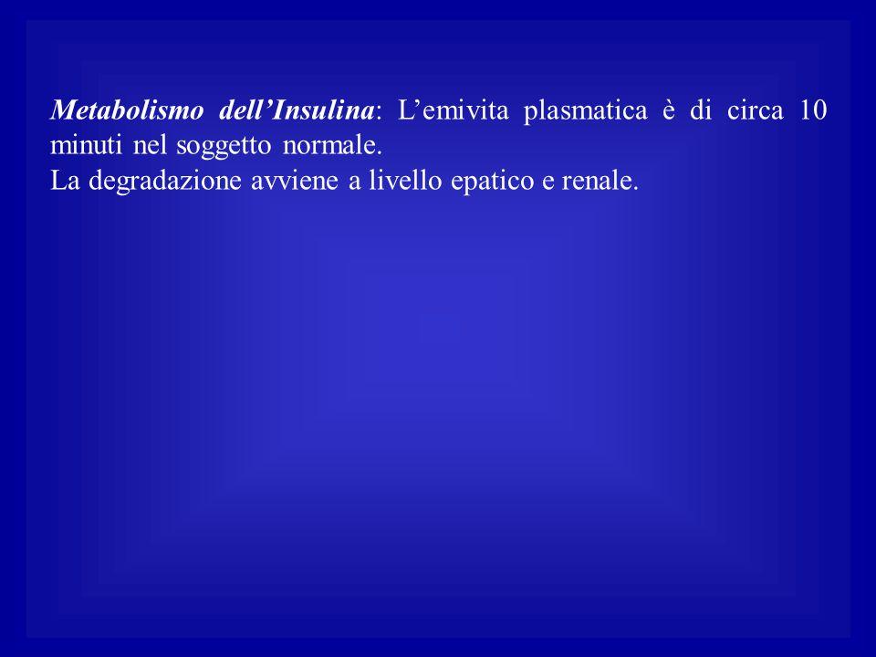 Metabolismo dell'Insulina: L'emivita plasmatica è di circa 10 minuti nel soggetto normale. La degradazione avviene a livello epatico e renale.