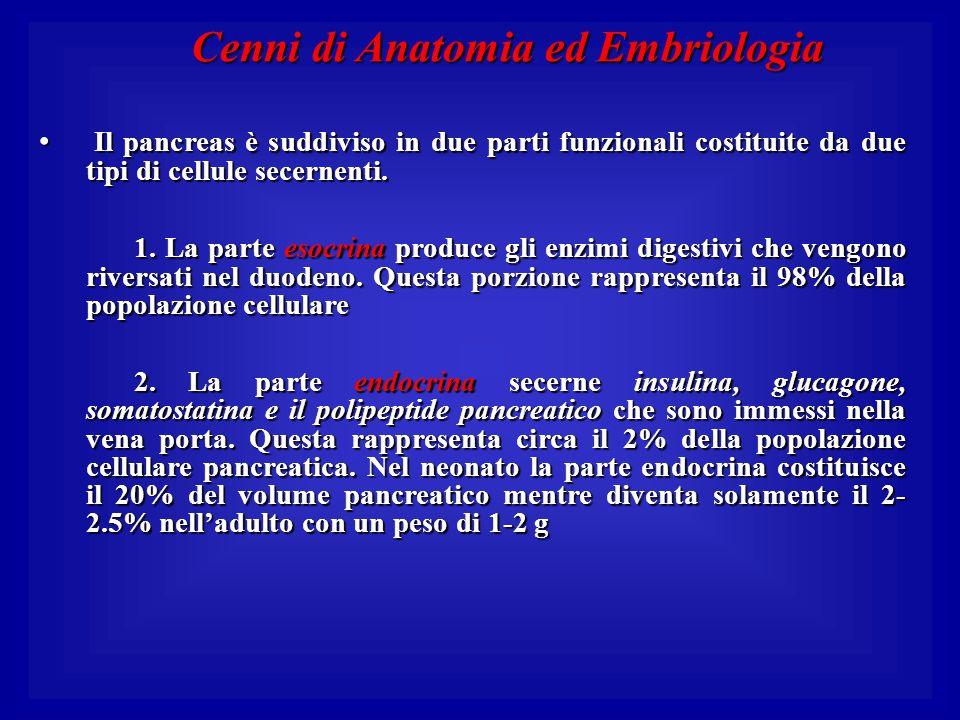Cenni di Anatomia ed Embriologia Il pancreas è suddiviso in due parti funzionali costituite da due tipi di cellule secernenti. Il pancreas è suddiviso