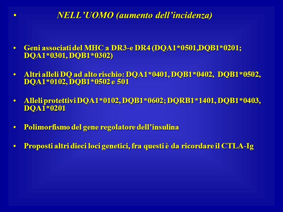 NELL'UOMO (aumento dell'incidenza) NELL'UOMO (aumento dell'incidenza) Geni associati del MHC a DR3-e DR4 (DQA1*0501,DQB1*0201; DQA1*0301, DQB1*0302)Ge