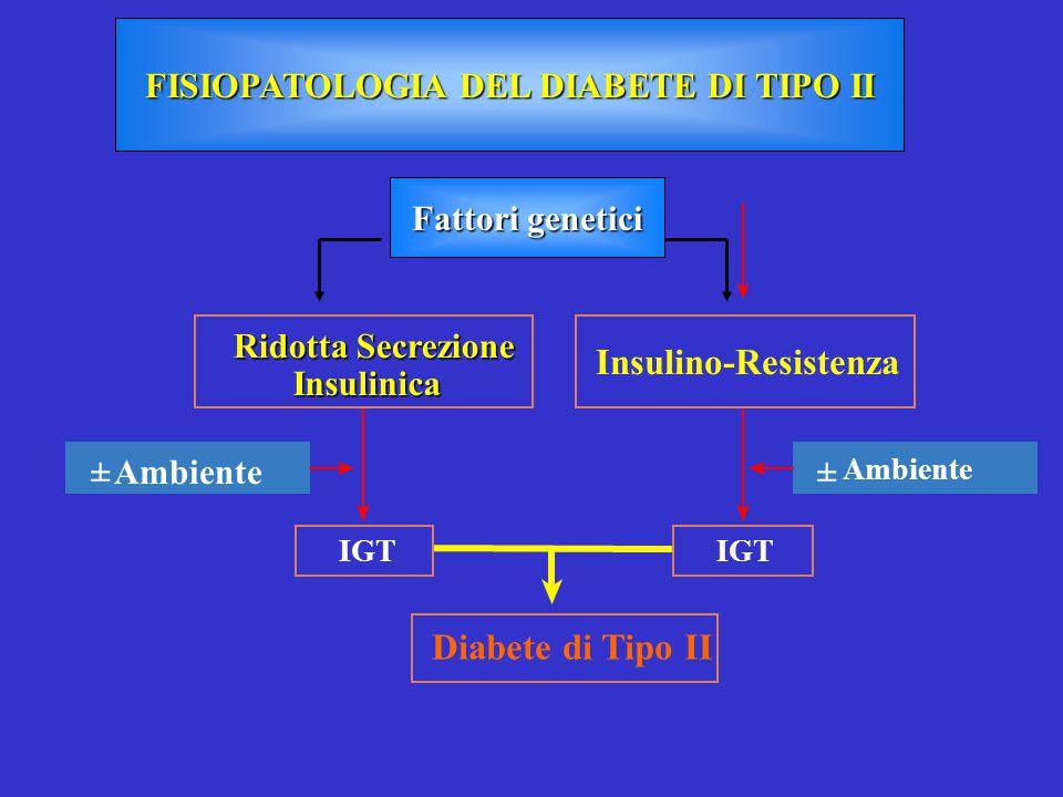 Diabete di Tipo II Insulino-Resistenza Ridotta Secrezione Insulinica ± Ambiente± IGT FISIOPATOLOGIA DEL DIABETE DI TIPO II Fattori genetici